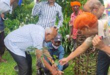 Photo of बापा उ.मा.वि.बोंदर में वनवासी सेवा मण्डल द्वारा किया वृक्षारोपण