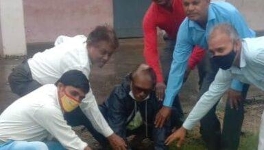 Photo of उत्कृष्ट विद्यालय परिसर में किया गया पौधा रोपण